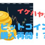 イケハヤさんがビットコイン購入を再開した件【仮想通貨投資】